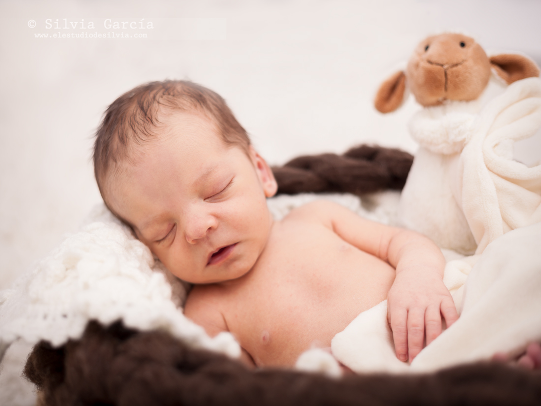 fotografía newborn en Madrid, newborn photography Madrid, fotografía recién nacido Madrid, fotos recién nacido, fotos bebes Madrid, fotógrafo recién nacido Madrid, fotografía maternidad, maternity photos, El Estudio de Silvia photography