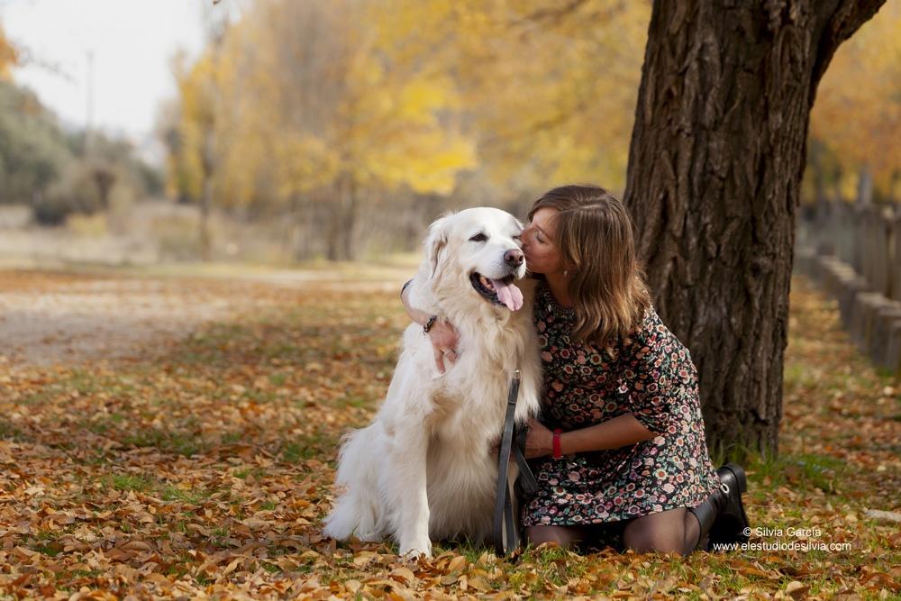 colores de otoño, fotos de otoño, fotos en el campo, sierra de guadarrama, sesiones en exteriores, fotografía familiar Madrid, fotos con mascota